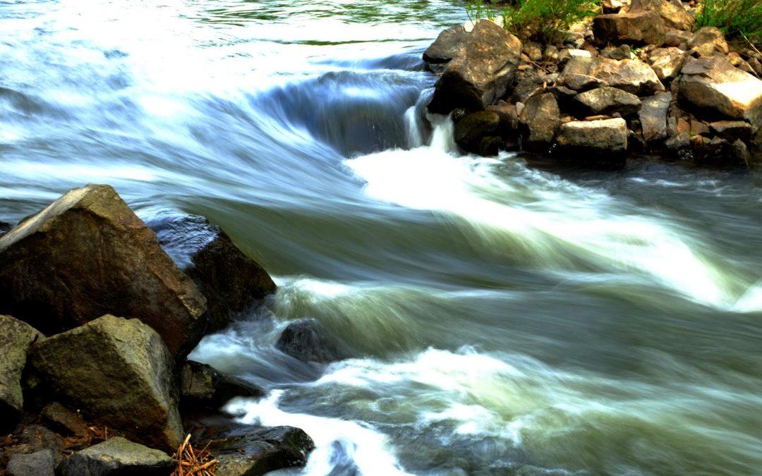 Wie du mit Ikigai dein Leben in Fluss bringst